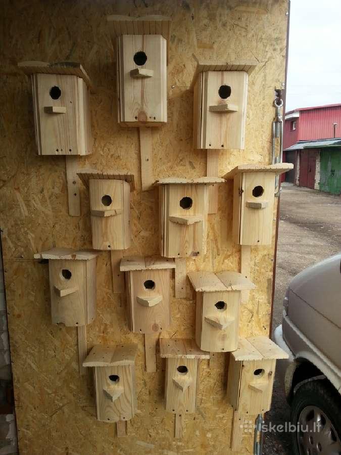 Inkilai paukščiam