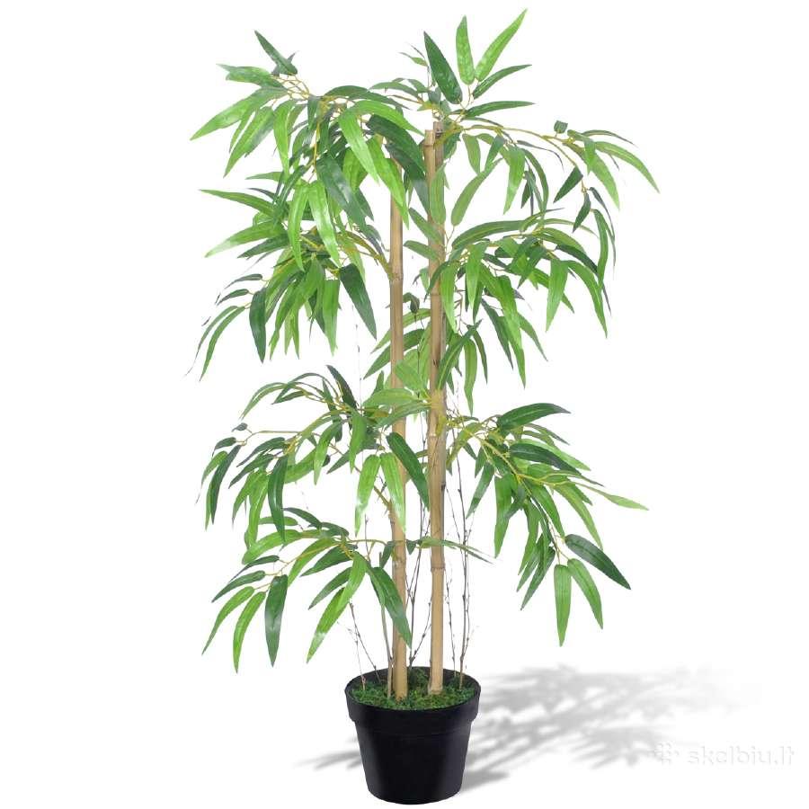 """Dirbtinis Bambukas """"Twiggy"""" su Vazonu, 90 cm, 50 €"""