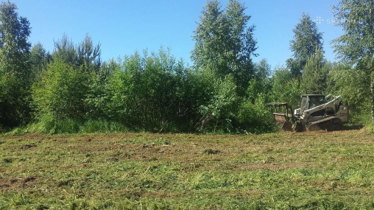 Sklypų valymas, krūmų, žolės pjovimas