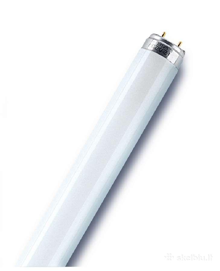 Liuminescencinės lemputės 36w, starteriai 4-65w