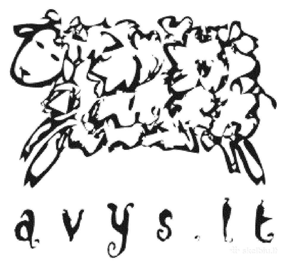 Perkame ėriukus, avis