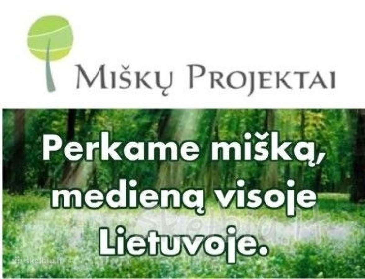 """""""miškų projektai"""" perka mišką gera kaina"""