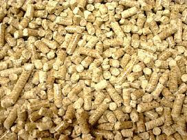 Pjuvenų granulės