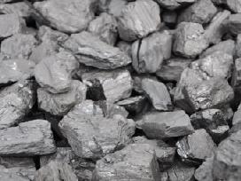 Kazbaso juoda plauta anglis