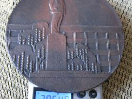 Ltsr stalo medalis .zr. foto.