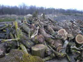 Parduodama malkinė mediena