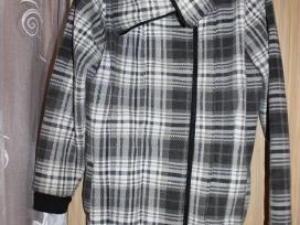Dailus paltukas
