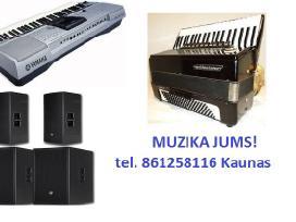 Muzikantas Kaune
