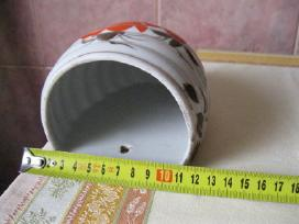 CCP Porceliano vazele ant sienos.047