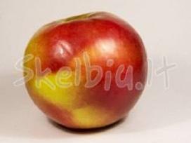 Natūralios obuolių sultys tetrapakuose