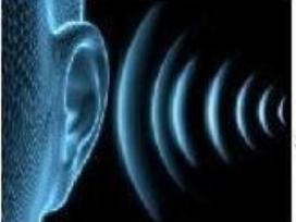 Signalinės (alarm) spynos