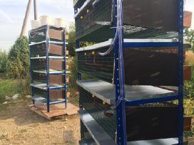 Naujos konstrukcijos narvas 200 putpelių