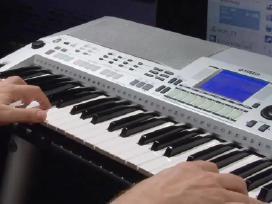 Muzikanto paslaugos