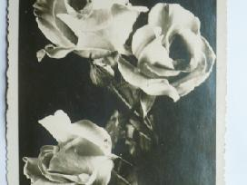 Tarpukario atvirutes,nuotraukos