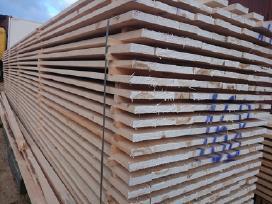 Statybine mediena tvorom.visa miediena pirmarušė