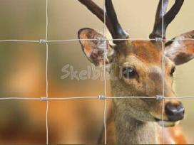 danieliu tvora