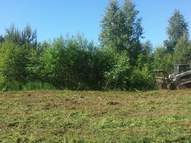 Sklypų valymas krūmų žolės pjovimas