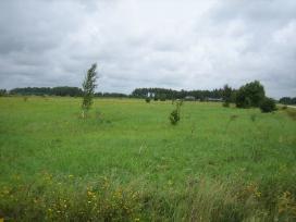 Žemės ūkio paskirties sklypas Mazūriškėse