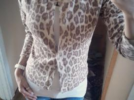 Persagstomas margas megztinis-palaidinė