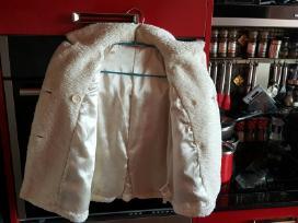 Grazus, siltas paltukas