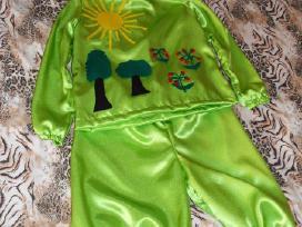 Karnavaliniu kostiumu nuoma nuo 3 iki 8metu.
