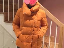 Nauja šilta Next striukė