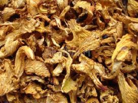 Šaldytus džiovintus grybus. šaldytas uogas