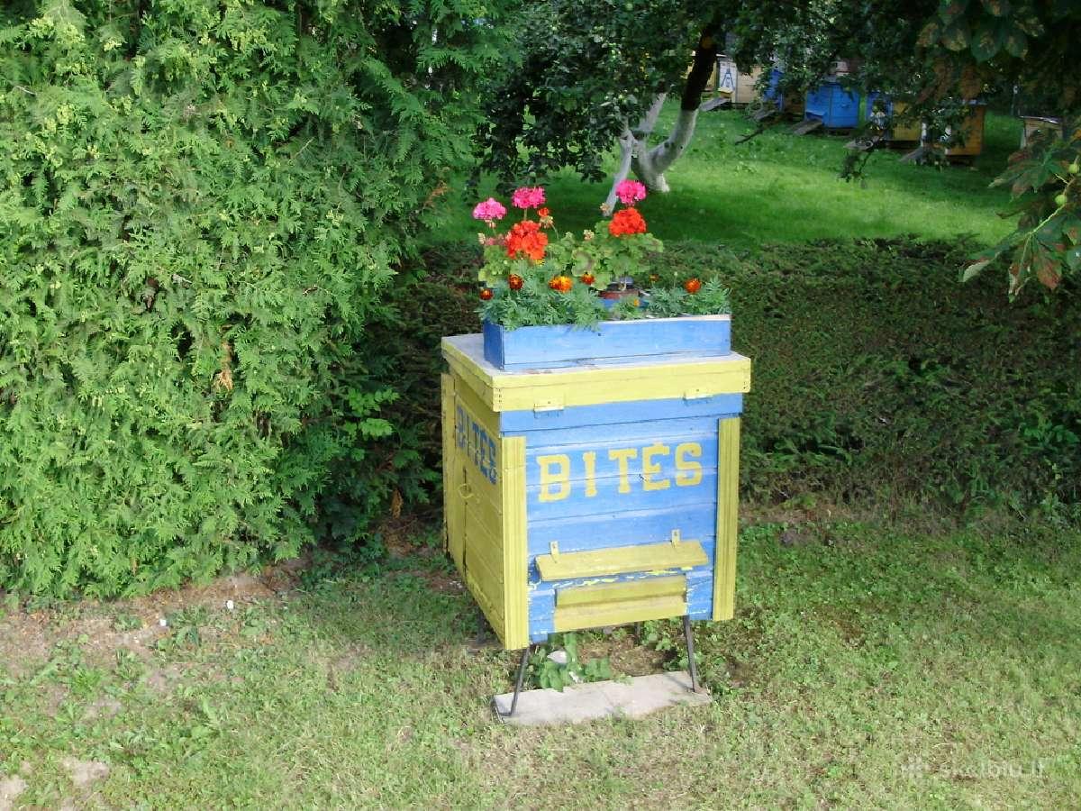 Parduodamas bičių medus.