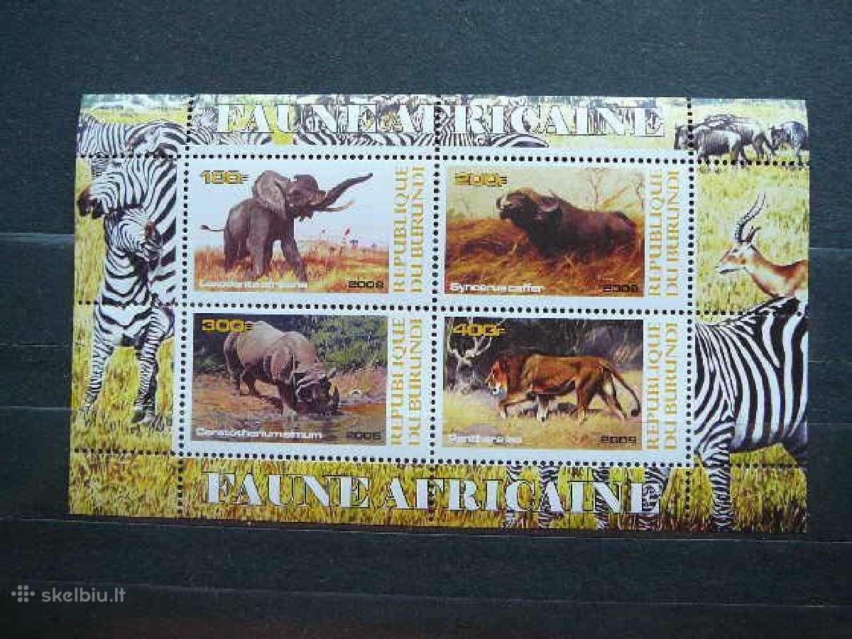 Zverys Afrikos svarus #g0050