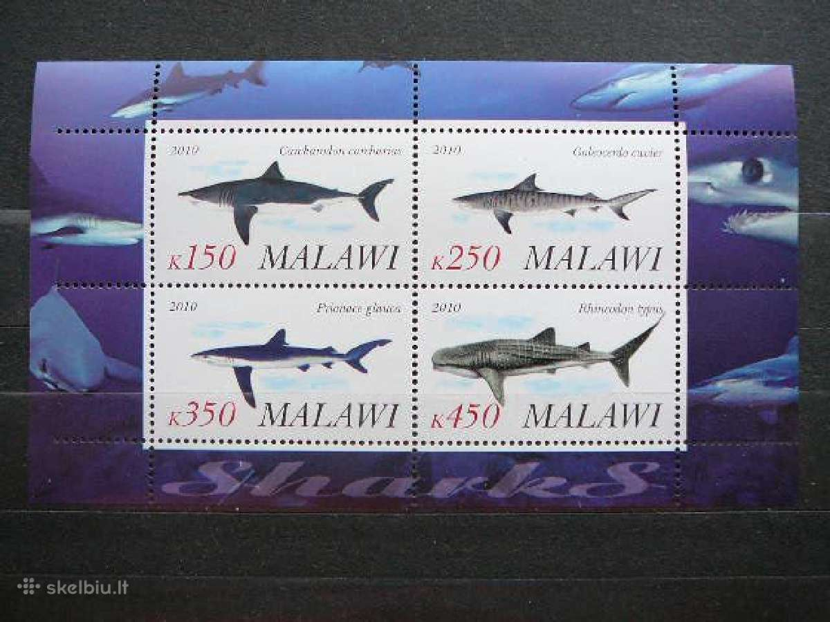 Rykliai svarus #g0100
