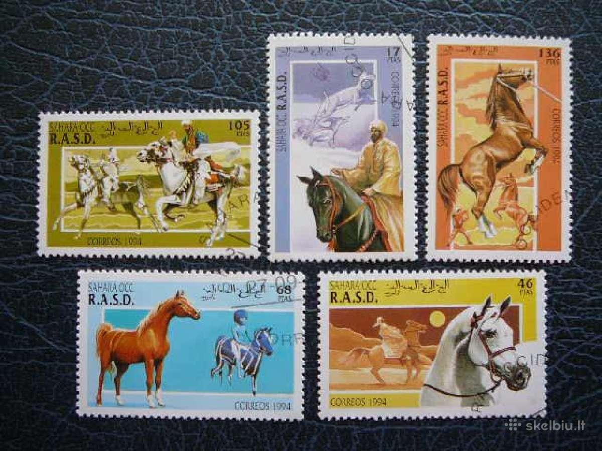 Arkliai #ark435