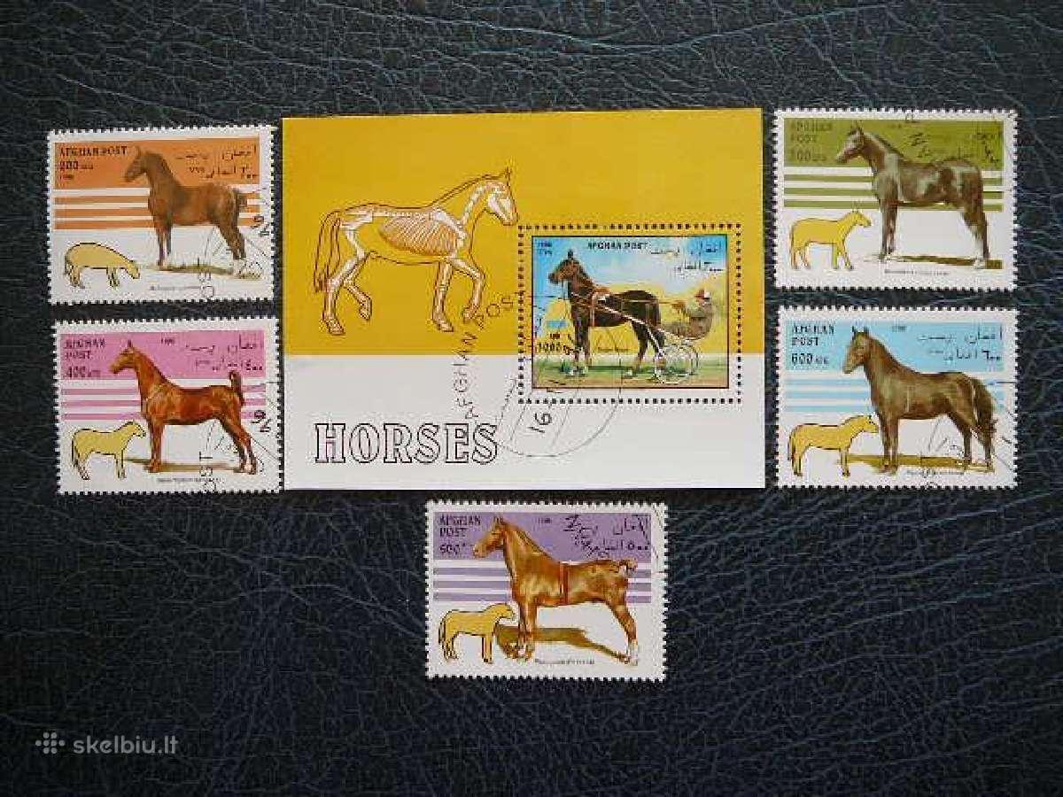 Arkliai #ark438