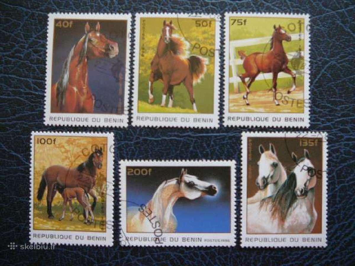 Arkliai #ark439