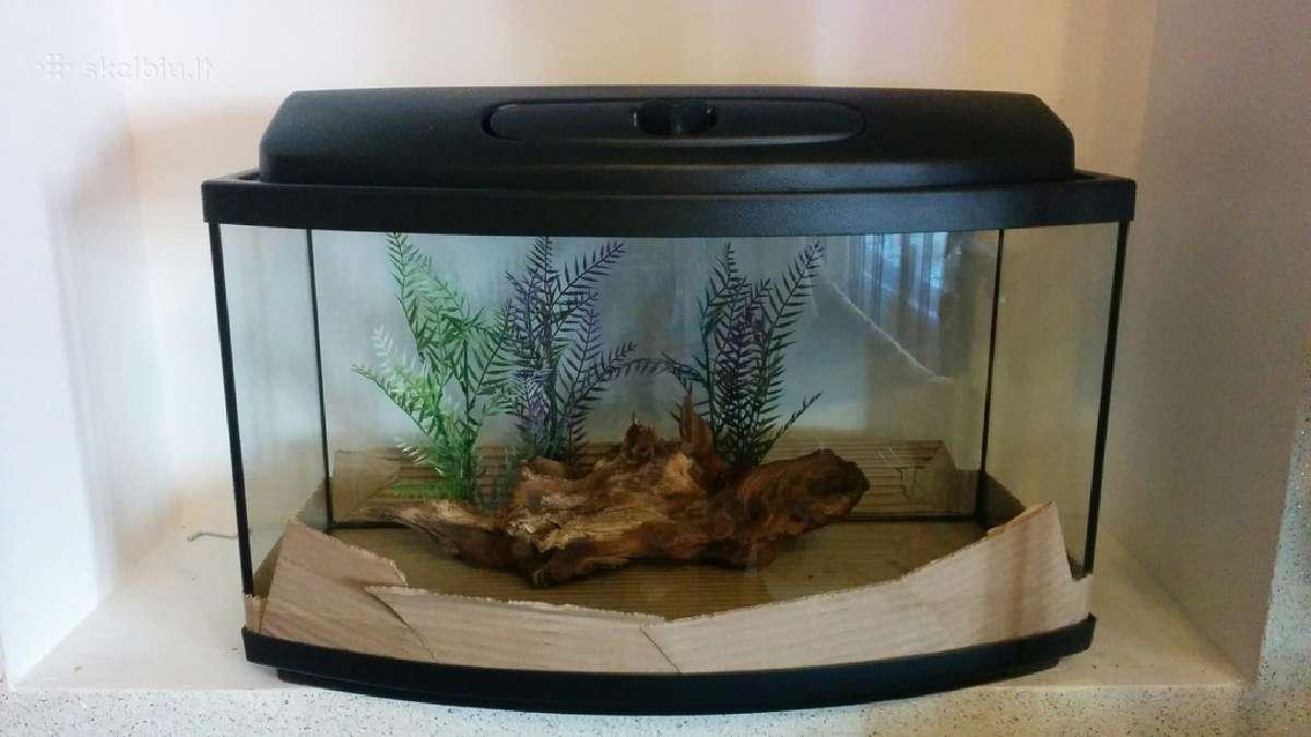 Nebrangūs akvariumai nuo 30 iki 450 litrų