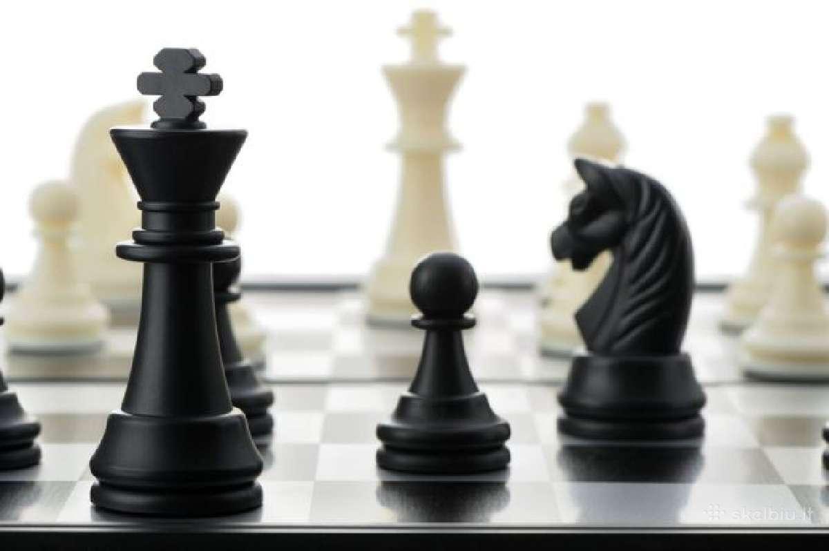 Šachmatų mokytojas(a) Vilniuje ir Klaipėdoje