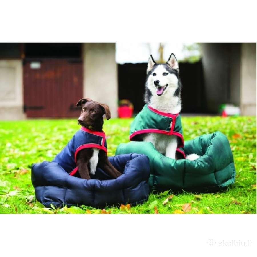 Kokybiškos ir originalios prekės šunims