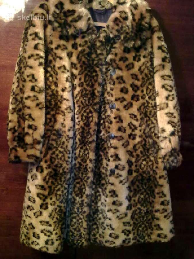 Tigrinis paltukas
