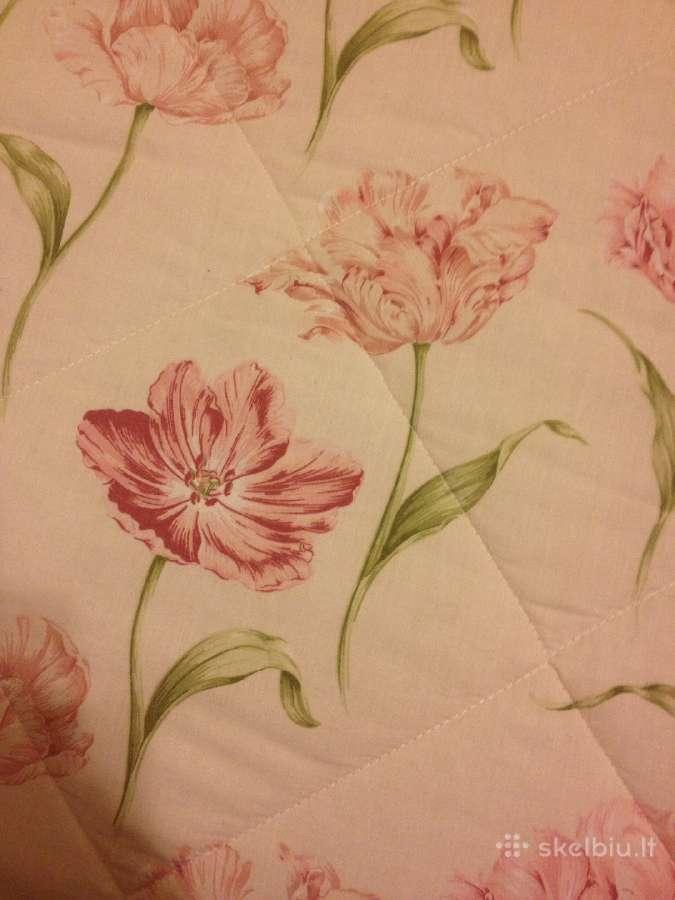 Graži ir spalvinga lovatiesė