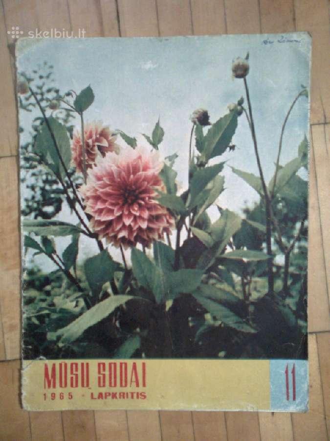 Zurnalas <Musu sodai> 1965m. 11 nr.