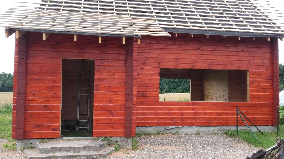 Mediniu namų ir tvoros dažymas
