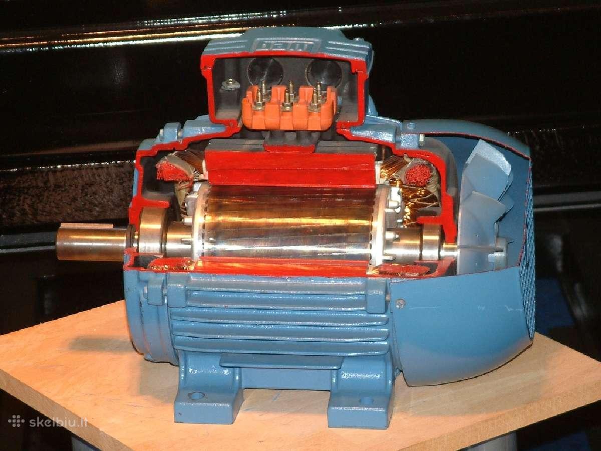 Elektros variklių remontas alytus