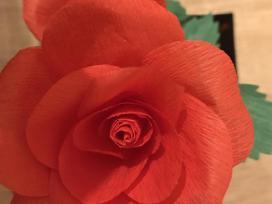 Popierinės rožės €5 (1vnt).