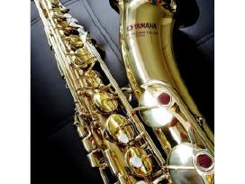 Saksofonai pradedantiems ir profesionalams. - nuotraukos Nr. 9