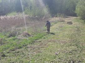 Žolės pjovimas trimeriu