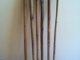 Natūralios bambuko medžio lazdelės