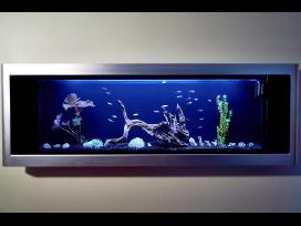 Akcija Daugiafunkcinis akvariumas už puse kainos !