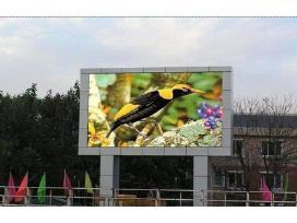 Lauko ekranas