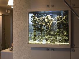 Akvariumo gamyba,pardavimas: gėlavandenis jūrinis