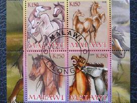 Arkliai #s179