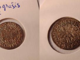 LDK pusgrašiai, Žygimantas Vaza 1546-1565